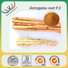 Astragalus extract free sample Chinese herb medicine 98% cycloastragenol,factory supply astragalus extract cycloastragenol