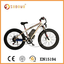 CE ceritification beach electric motorbikes