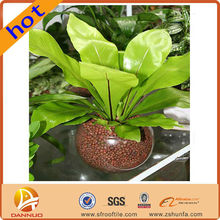 Convenient Benefits environmental protection pearl shape crystal soil