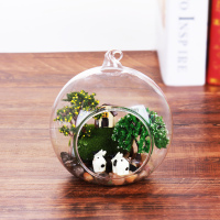 Clear Round Plant Globe Hanging Glass