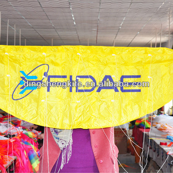 traction power kite from professional kites factory
