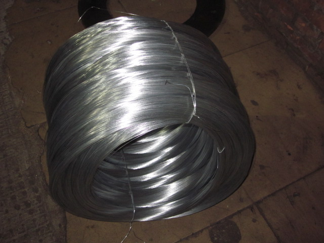 carbon steel looking for products to represent with low price good quality