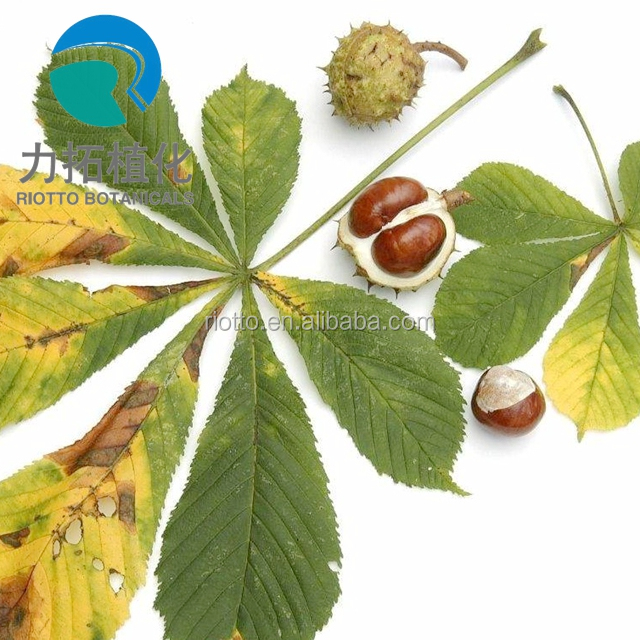 Sell High Quality Horse Chestnut Extract(aescin 20% 98%)