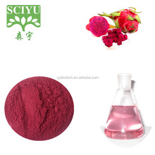 High quality and 100% natural superfoods pitaya powder
