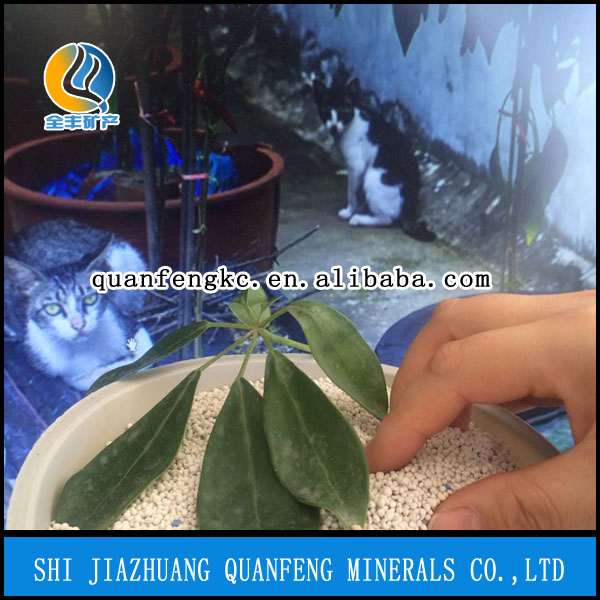 free sample, quick clumping, natural fragance bentonite cat litter