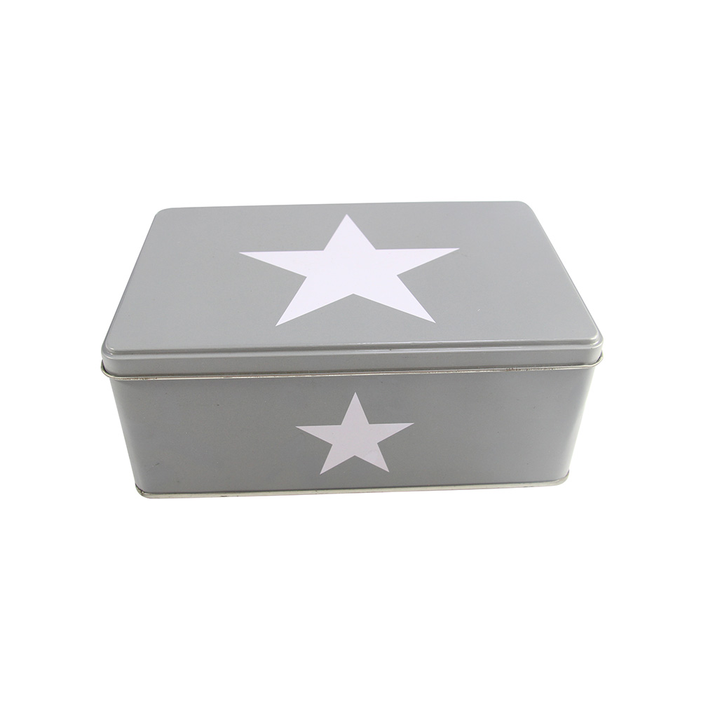 Full color printed rectangular metal tinplate biscuit cookie tin box container for gift packaging and food storage
