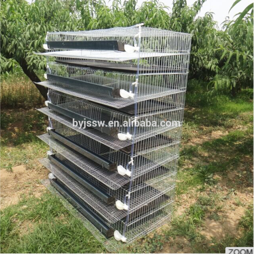 Quail Layer Cages And Equipment For Sale Trade Assurance