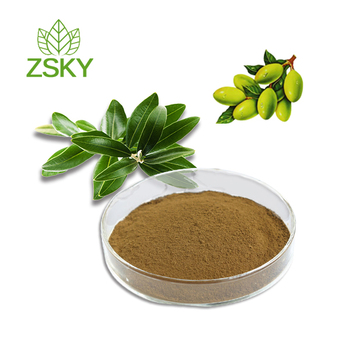 The Olive Leaf Extract with Natural Oleuropein Powder