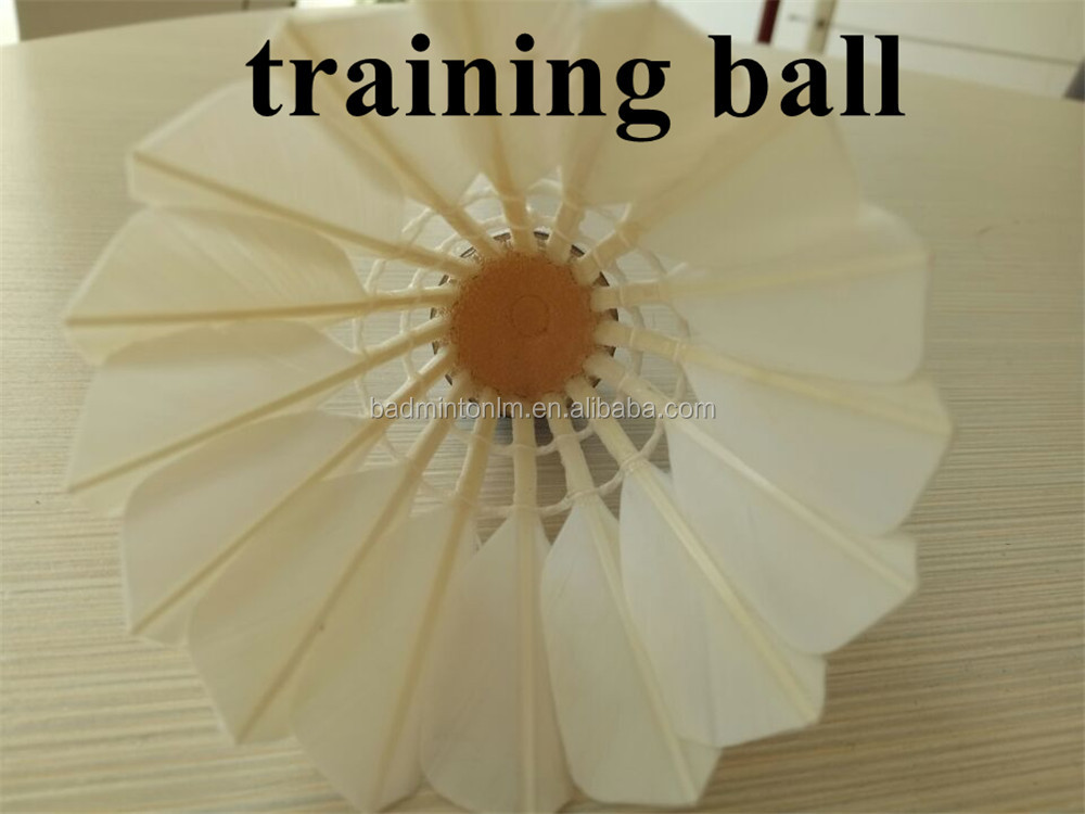 Cheap Training Badminton Feather Shuttlecock Logo