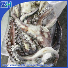Good frozen seafood giant squid tentcle from peru