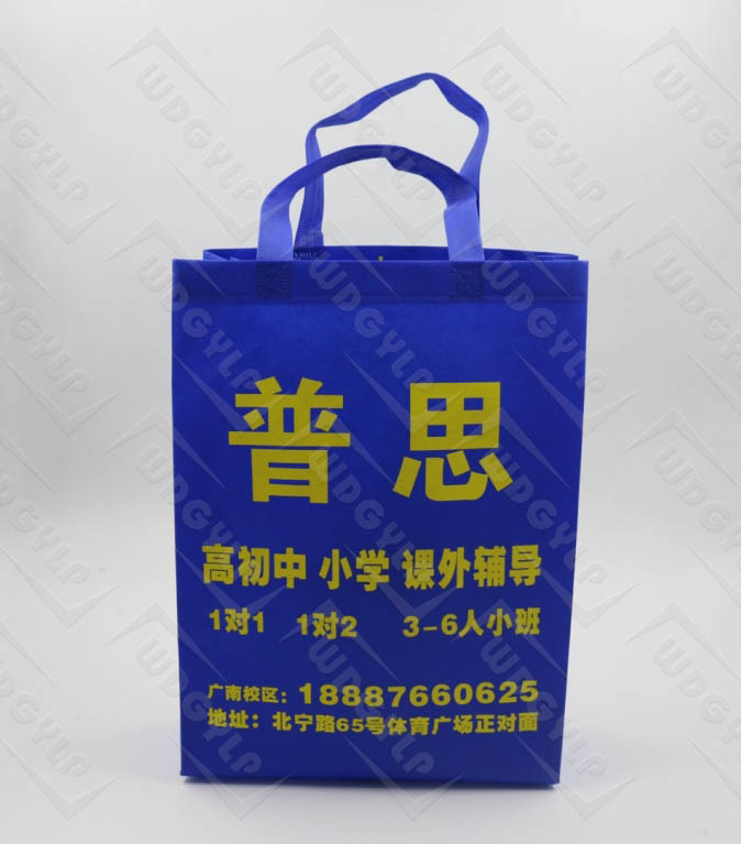 Foldable PP Non Woven Shopping Tote Bag with Handle