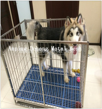 Dogs Application and Pet Cages, Carriers & Houses Type Kennel