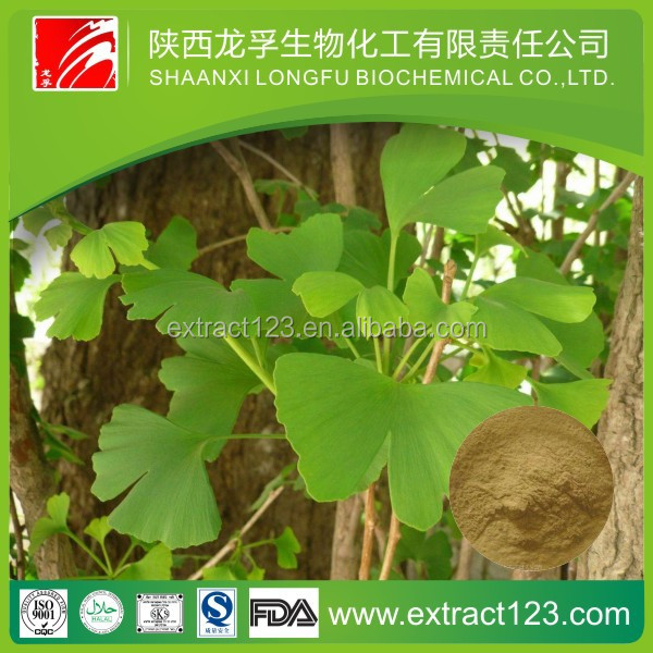 Manufacturer Supply High Quality Ginkgo Biloba Leaf Extract