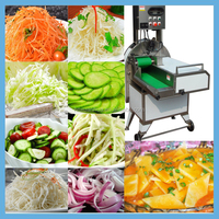Multifunctional Chinese Vegetable Cutter Machine/Carrot/Potato/Cabbage/Cucumber Cutter