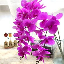 MW31580 butterfly orchid four color for wedding decoration home fashionable decoration long term preserve