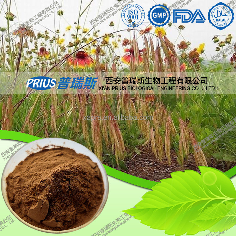 100% Nature high quality 99% Avena Fatua L. Oat extract
