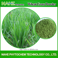 High Quality Wheatgrass Powder,Wheat Grass Powder,Wheat Grass Juice Powder