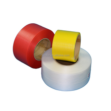 Colourful Plastic Packing PP Strap/PP Belt/PP Band