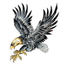 Best black ink for eagle body tattoo designs art QTS-1527