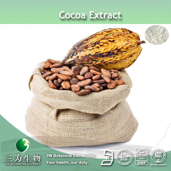 100% Pure Cocoa Theobromine Powder In Large Stock