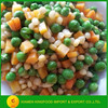Fresh Best Canned Vegetables Chinese Canned Mixed Vegetables Brands