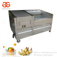 Brush Type Fruit Cleaning Equipment Carrot Cleaner Potato Peeling Palm Date Washer Vegetable Washing Machine Industrial