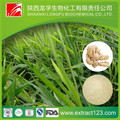 Factory Supply Ginger Root Extract
