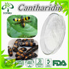 Natural cantharidin 56-25-7