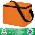 Customized Cheap Reusable Insulated Bag Cooler Bag