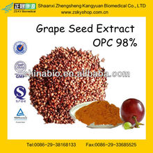 GMP Manufacturer Supply Natural Black Grape Seed Extract