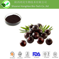 Honghao Organic Pure Natural Purple-Red Powder 5:1 acai berry extract/Euterpe oleracea