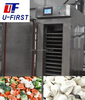Stainless Steel Vegetable Quick Freezing Equipment