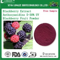 Pure 25% Anthocyanidins , Blackberry Extract/Blackberry Powder with Free Sample