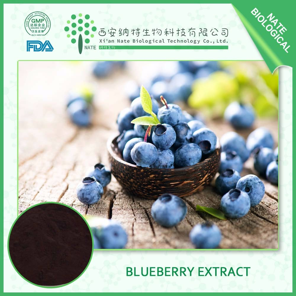 China supplier provide ISO Certificated Natural Blueberry Extract Powder 25% Anthocyanins in bulk