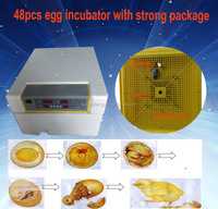 top high hatching rate mini 48pcs 56pcs egg incubator for poultry and bird