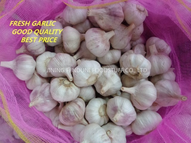 Chinese 2017 New Crop Fresh Garlic Price