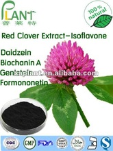 High quality with lowest price Red clover extract 8%-40%