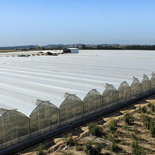High quality steel structure and long service life used greenhouse equipment for sale