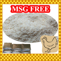 Hot Sale 20g sequent bag Halal Salty Chicken Powder Seasoning