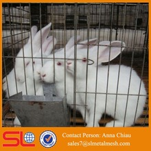 rabbit farming equipment / rabbit farm for sale / cheap rabbit cages