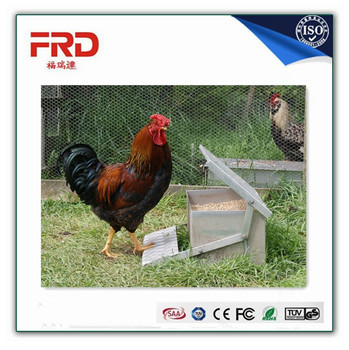 FRD chicken treadle/foot feeder for sale, made in CHINA, 5KG