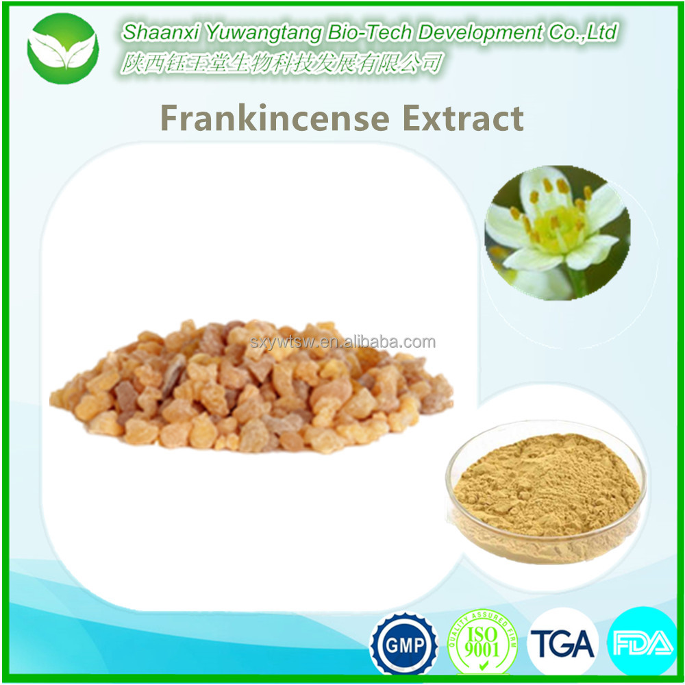 Top selling frankincense resin, frankincense extract powder