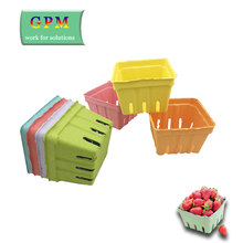 New Design waterproof disposable fruit thermoformed pulp packaging tray