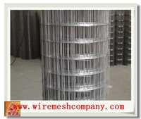 3/4 Inch Stainless Steel Welded Wire Mesh,best price welded wire mesh roll