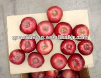 2014 fresh red fuji apple,China(apple:fuji, huaniu, gala, golden,qingguan, red star)