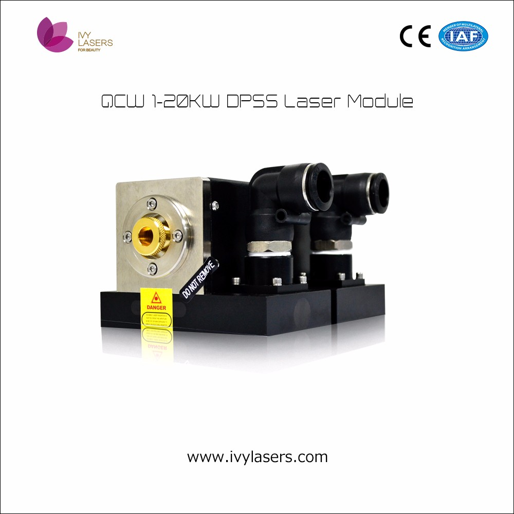 high standard in quality mJ level QCW 900w-20Kw pulsed DPSS laser module/5w laser module