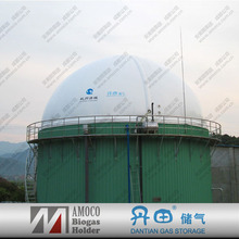 CE and ISO Approved Biomass Equipments, Enamel Digester, Industrial Anaerobic Bio Fermentation with Biogas Holding Bags