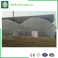 Low Cost Agricultural PC Sheet Greenhouse
