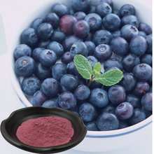 Healthy blueberry extract powder in bulk