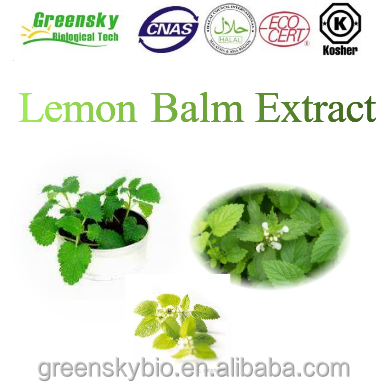 Acceptable price 100% Natural Lemon Balm herb Extract, . 10:1 5%,10%Rosemarinic Acid; 17-21%VC
